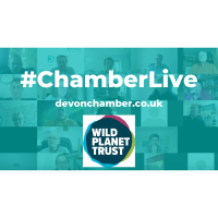 Chamber Live - What's going on at the zoo?