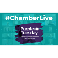 Chamber Live - Are you ready to cash in on Purple Tuesday?