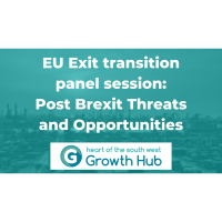 EU Exit transition 1st panel session - Post Brexit Threats and Opportunities