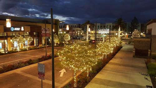 Shopping Center Tree Lighting