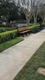Sidewalks, Paths, and Benches