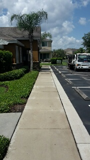 Sidewalks & Curbs