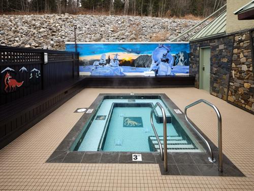 Fernie Fox Hotel hot tub