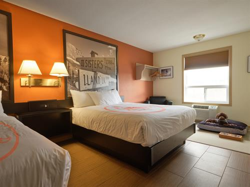 Fernie Fox Hotel Pet friendly room