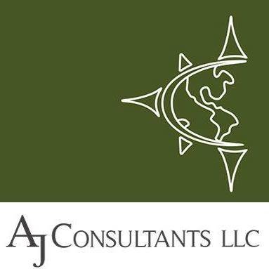Small Business Snapshot: AJ Consultants