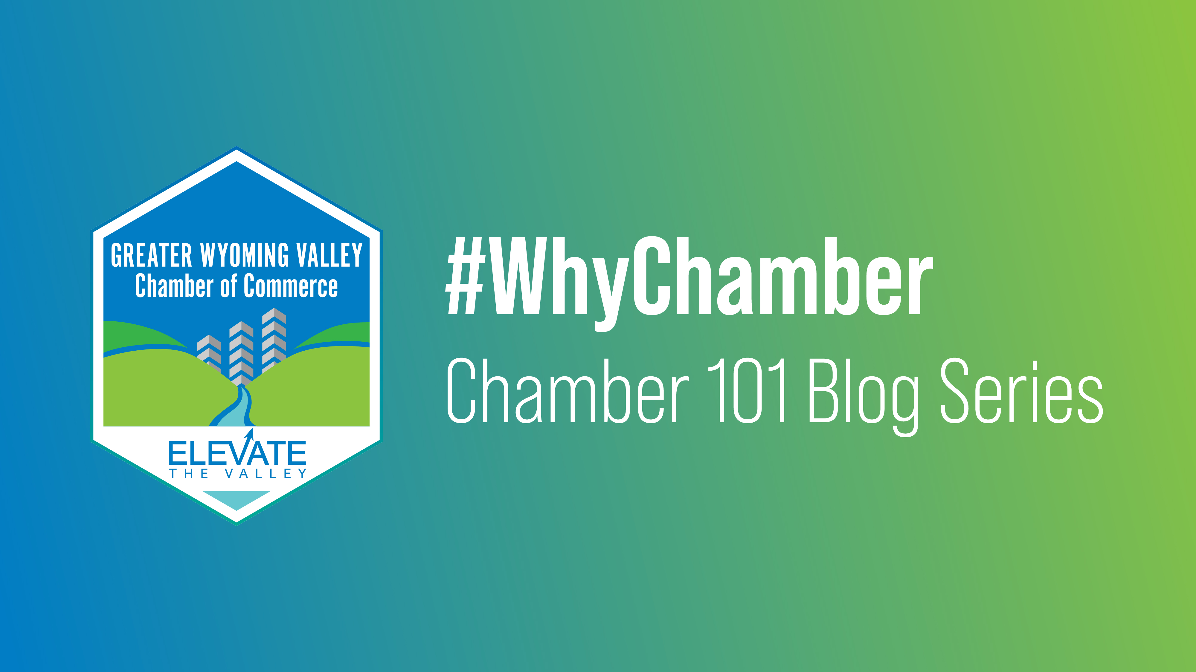 Image for #WhyChamber: Chamber 101