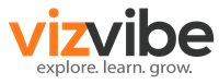 VizVibe LLC