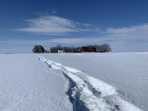 Quiet Winter Adventures at Farmamerica