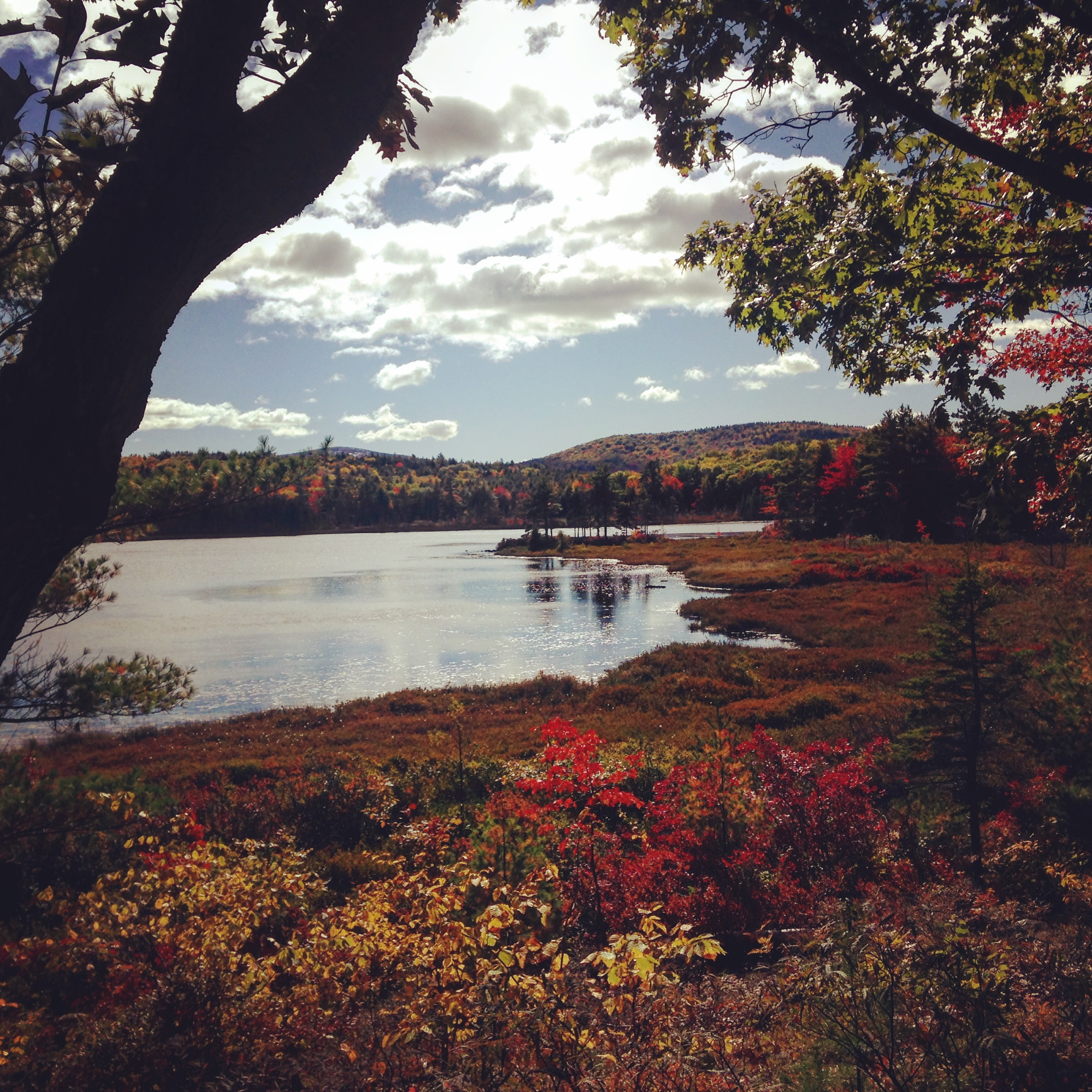5 Reasons Why You'll Want to Escape to Bar Harbor and Acadia National Park This Fall