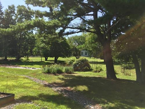 Gallery Image CAP_lawn.jpg