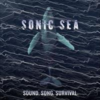 Sonic Sea Documentary at the Criterion