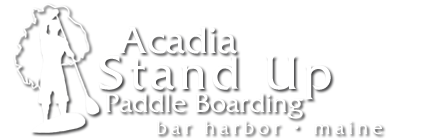 Acadia Stand Up Paddle Boarding