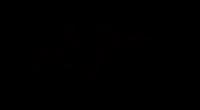 Bar Harbor Music Festival: 16th Annual Bob Noonan Memorial Concert