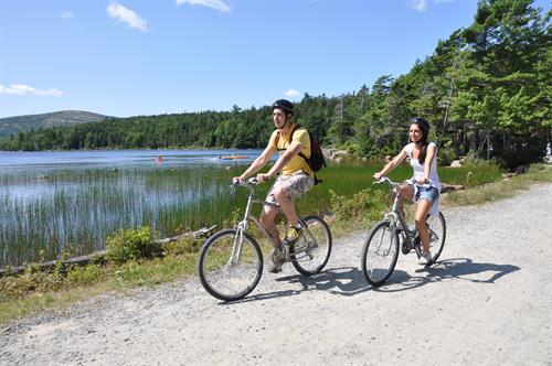 The carriage roads provide an insider's look at the scenery of Acadia National Park.