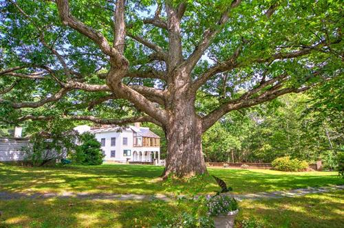 The Oaks (Former Estate of Maxfield Parrish) - Plainfield, NH