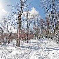 Enjoy our 35 glades!