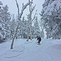 Experience our glades!