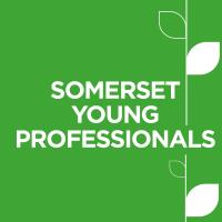 Somerset Young Professionals: Online mystery