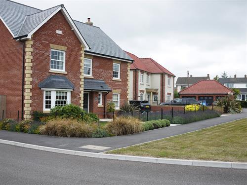 Housing Landscaping