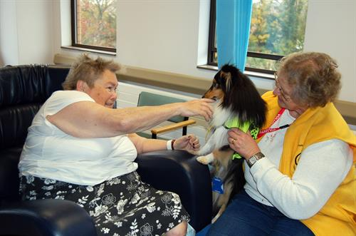 Gallery Image Pets_as_Therapy_Patient_and_Daisy_the_Dog.jpg