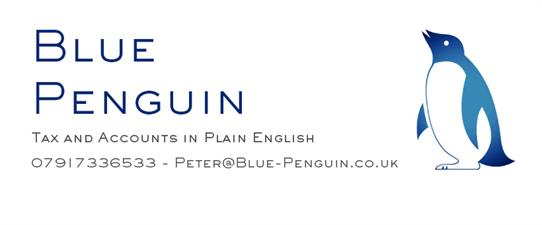 Blue Penguin Chartered Accountants