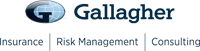 Gallagher Insurance - Directors Briefing Webinar: Re-engineering the manufacturing risk in the post-COVID-19 environment