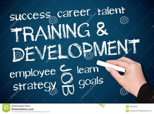 Tailored Training and devlopment