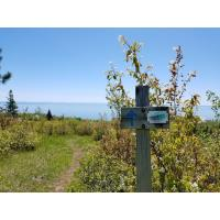 SHTA Guided Hike: Split Rock Wayside to Beaver Bay