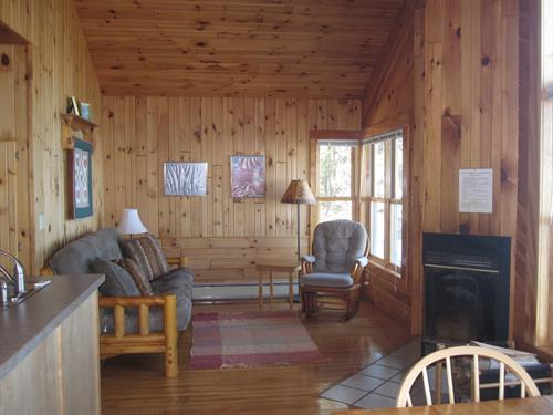 Year round cabin living room, #7