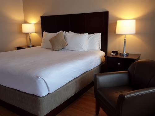 Yankee Clipper Motel - Guest Room