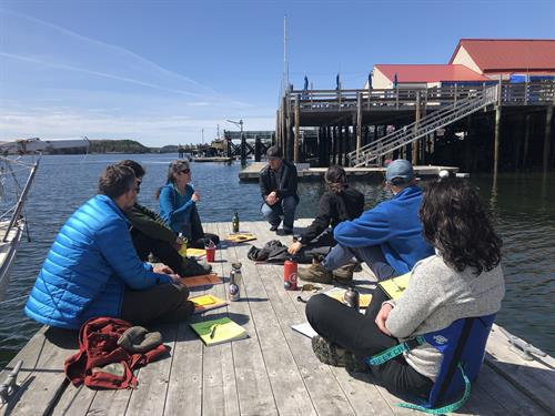 Sea Kayak Guide training!