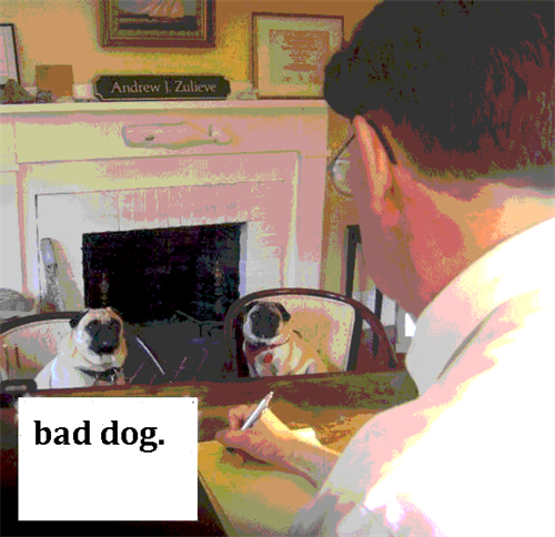 Gallery Image pugs_at_work.png