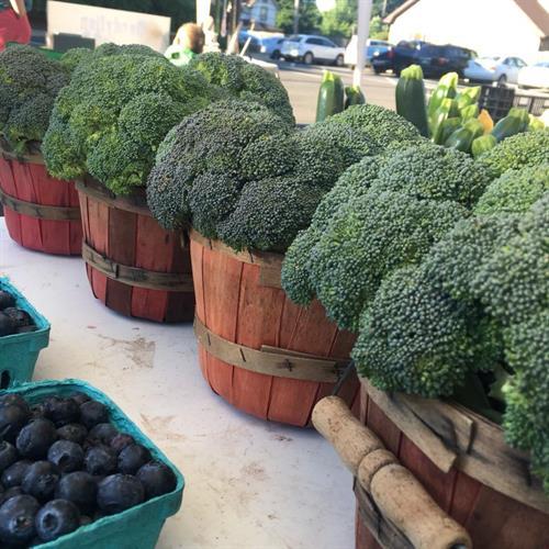 Gallery Image broccoli.jpg