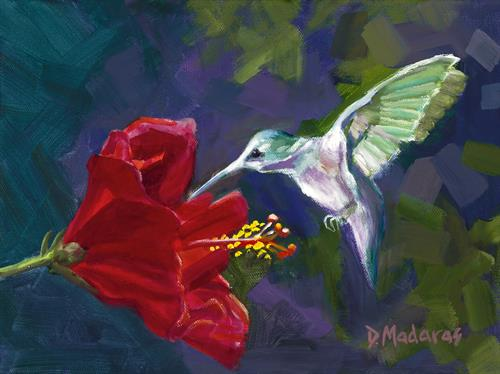 Hummingbird and the Hibiscus