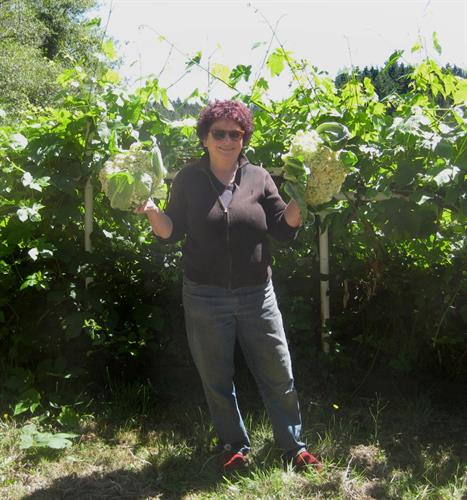 "Chef Nanci Courtney cheering on the cauliflower harvest with ready-to-eat ""pom-poms."""