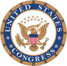 Image for 2021 Congressional App Challenge