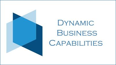 Dynamic Business Capabilities LLC