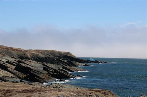Road to Mistaken Point and Cape Race