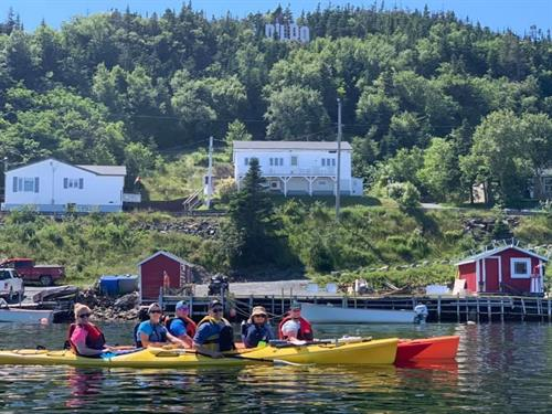 A kayaking tour in Dildo and grab a craft beer at the brewery after. Perfect day!