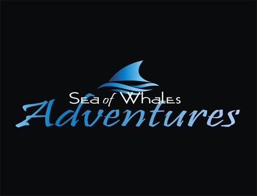 Gallery Image Sea_of_Whales_Adventures_-__Logo_-_Black_Background.jpg