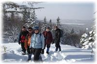 Snow Shoe Trails