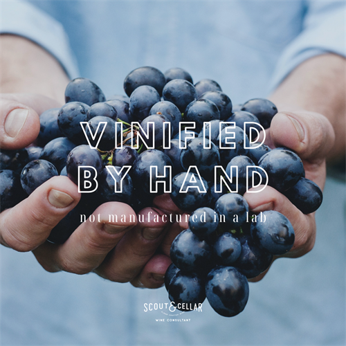 Vinified by hand.