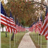 Veterans Walk of Flags