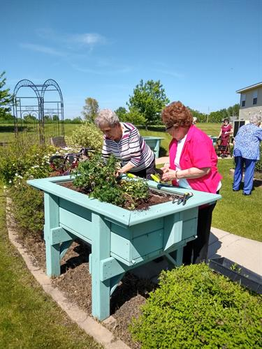 The Garden Club also planted vegetables in the raised planters.