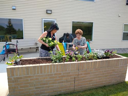 Mona, Office Manager, and Audrey, member of the Garden Club, layout the flowers to be planted in the brick planter.