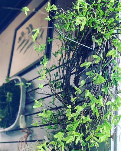 Gallery Image home.jpg