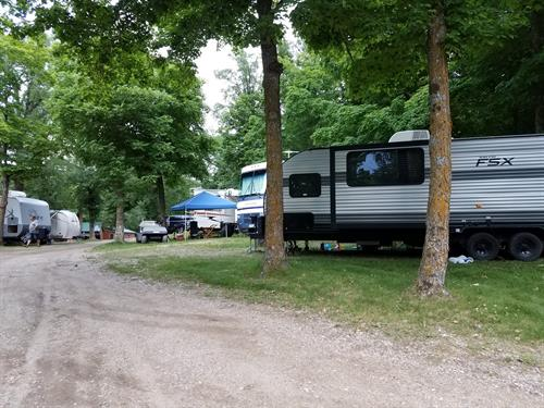 Lakeside Shaded Campsites