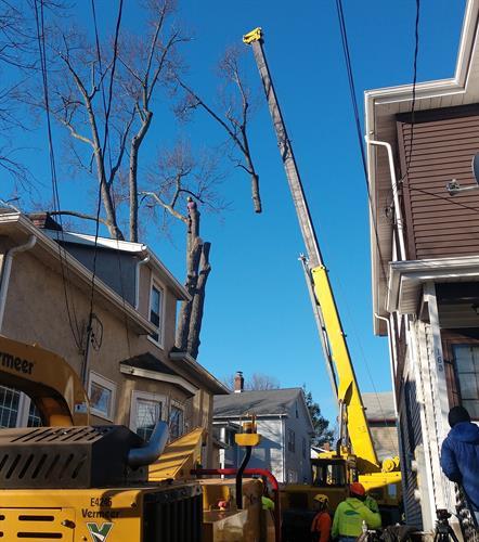Crane Work off Park