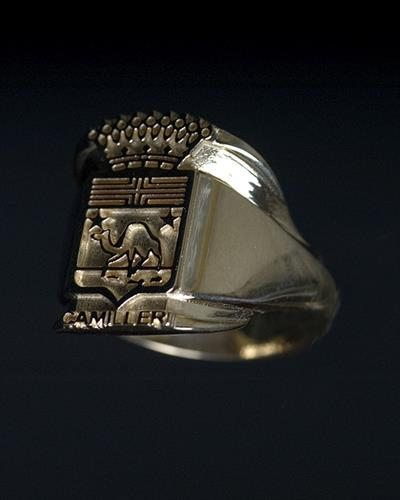 Custom-Made Yellow Gold Family Crest Ring