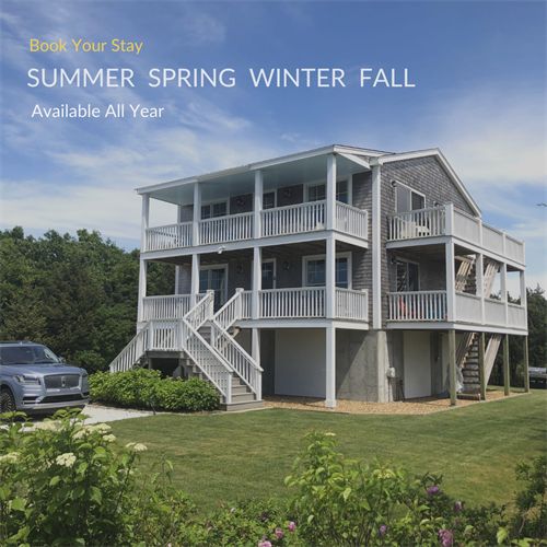 Gallery Image Summer_Spring_Winter_fall-4.png
